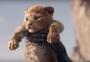 Ad agosto , dopo 25 anni, arriva il remake del Re Leone (Trailer Video Ita)