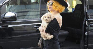 Lady Gaga a Roma, mentre a Los Angeles rapiscono i suoi cani
